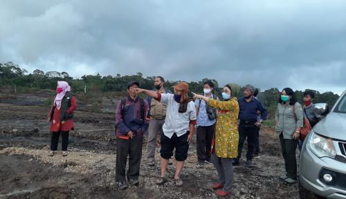 Totalitas BPPSDMP Dukung Food Estate di Sumut