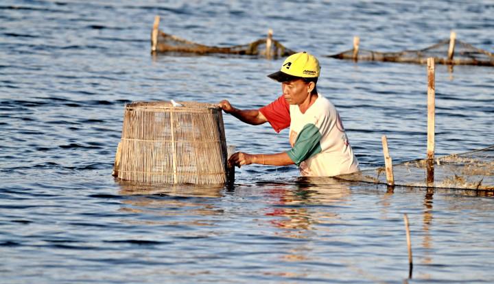 Selama 27 Tahun, Pertamina Kucurkan Rp3,5 Triliun untuk Puluhan Ribu Mitra Binaan