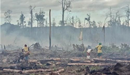Gencar Sadarkan Pengambil Kebijakan soal Bahaya Krisis Iklim!