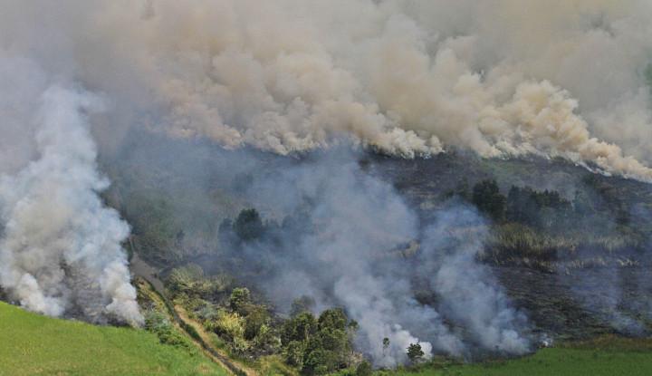 Kerusakan Lingkungan Jadi Ancaman Serius Usai RUU Cipta Kerja Disahkan