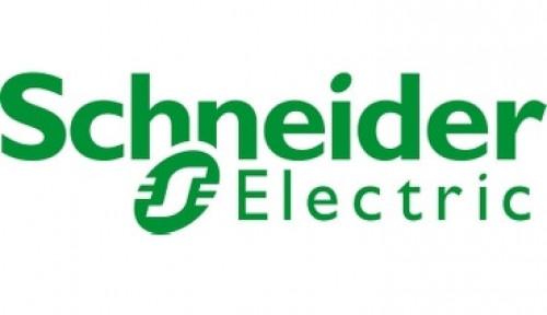 Gencarkan Energi Terbarukan, Schneider Electric Diganjar Renewable Energy Markets Asia Awards