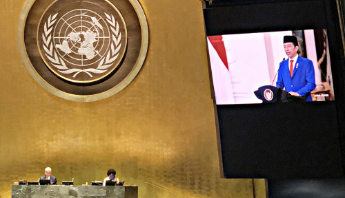 Jokowi Mati-Matian Bela Palestina