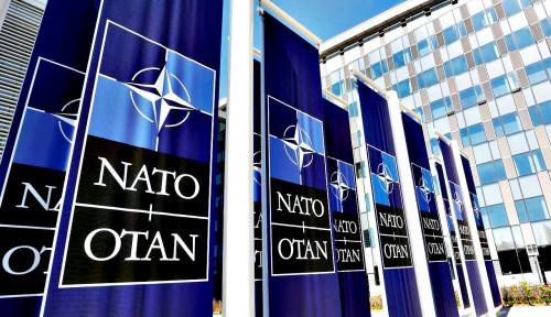 Saingi NATO, Rusia Gak Tertarik Dirikan Blok Timur dengan China karena...