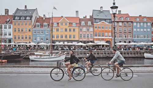 Jutaan Cerpelai Dibantai, PM Denmark Menangis dan Minta Maaf