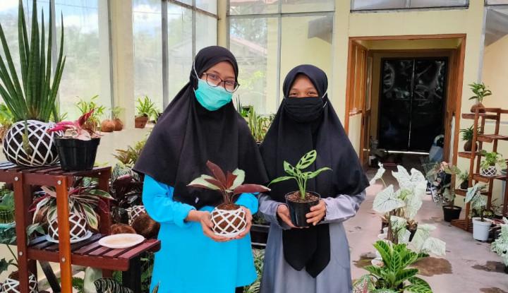 Cerdas, 3 Milenial Asal Banjarbaru Untung Besar dari Bisnis Tanaman Hias
