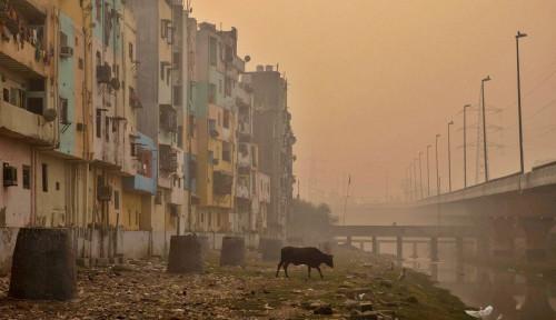 India Kedapatan Wabah Penyakit Langka, Pasien Buta hingga Kehilangan Tulang Rahang