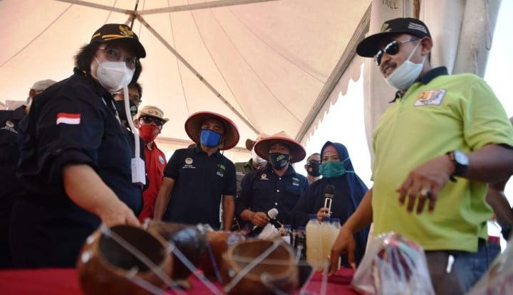 Menteri LHK Cek Langsung Progres Padat Karya Penanaman Mangrove di Serang
