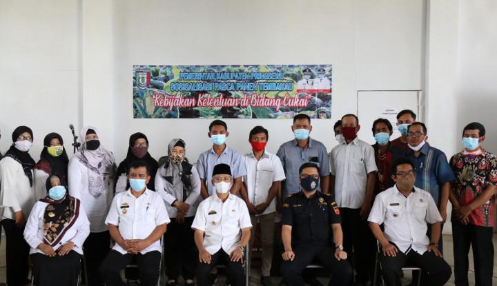 Bea Cukai Bandar Lampung dan Pemkab Pringsewu Kembangkan Potensi Hasil Panen Tembakau