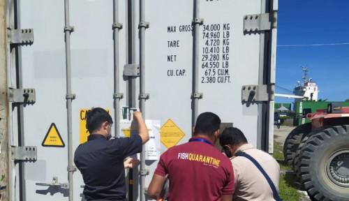 Jelang Akhir Tahun, Giat Ekspor Bea Cukai Maluku Makin Meningkat