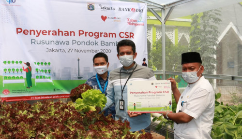 Bank DKI Ajak Warga Rusun DKI Jakarta Kembangkan Usaha Hidroponik