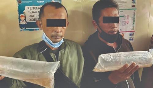Lindungi Kekayaan Alam Indonesia, Bea Cukai Gagalkan Ekspor Ilegal 42.500 Benih Lobster