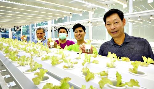 Tunas Farm Kantongi Pre-Seed Funding, Bakal Tingkatkan Sistem hingga Ekspansi