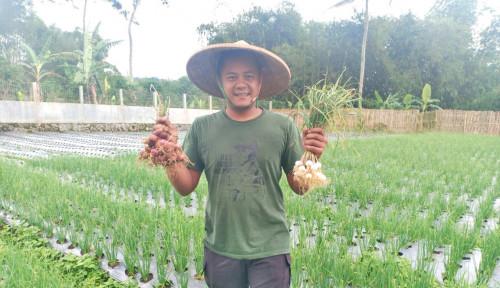 YDBA Dorong Anak Muda Terjun ke Sektor Pertanian