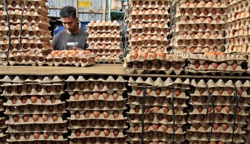 Harga Telur Ayam Anjlok, BI Proyeksikan Pekan ini Deflasi 0,01%