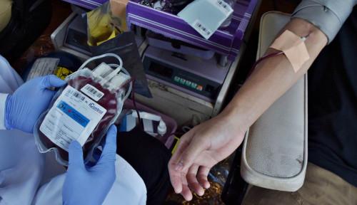 Pertamina Bantu PMI Soal Donor Plasma Konvalesen: Dari Sumbang Alat Hingga Cari Pendonor
