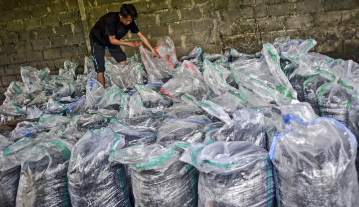 Bukan Hilang, Tapi Kuota Alokasi Pupuk Subsidi yang Memang Turun!