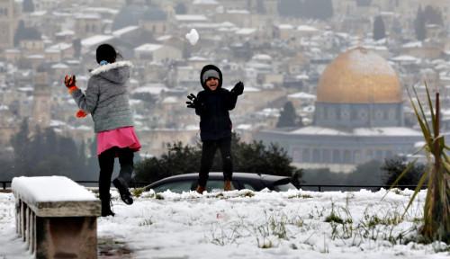 Orang PKS Murka, Ngamuk Sejadi-jadinya: Israel Laknatullah, Bangsa Biadab!