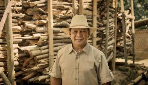 Pak Prabowo, Ada Pesan dari Tokoh Papua Nih: Benahi Alutsista Pak, Jangan Sibuk Urus Singkong!