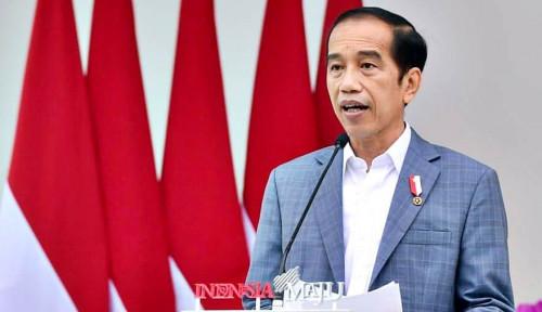 Di Depan Kanselir Jerman, Jokowi Pamer RI Punya 5 Unicorn dan 1 Decacorn