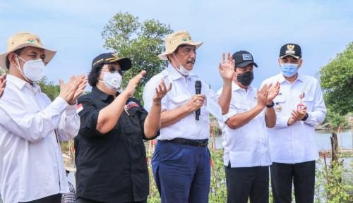 Penanaman Mangrove Dapat Pulihkan Lingkungan Hingga Dongkrak Ekonomi Rakyat