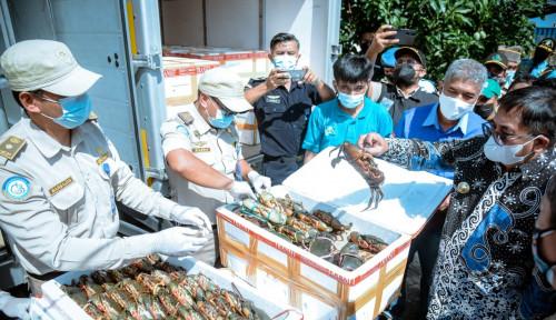 Angkasa Pura I Balikpapan Dukung Ekspor Kepiting Bakau ke Negeri Tirai Bambu