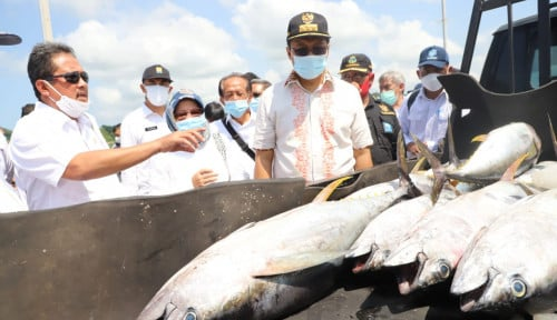 Bertemu Nelayan Tuna di Lombok, Menteri Trenggono Imbau Jaga Kualitas Ikan