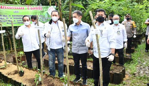 Bamsoet Bersama Mentan Beri Bantuan Bibit Vanili kepada Petani Salatiga