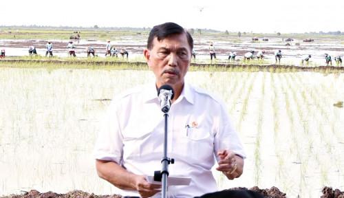 Koordinasi Food Estate Kalteng Diperkuat, Infrastruktur Terus Dibenahi
