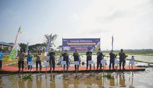 Pupuk Indonesia Lakukan Tanam Perdana Komoditas Padi di Sidoharjo
