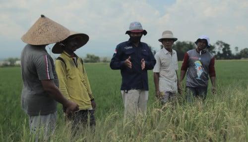 Terus Berinovasi Ikuti Perkembangan Teknologi, Pupuk Indonesia Luncurkan Sahabat Petani