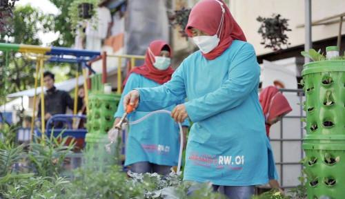 BRI Peduli Bantu Urban Farming di 18 Lokasi di Indonesia, Wujud  Apresiasi Lingkungan dan Kartini