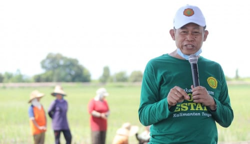 Kementan: Food Estate Kalteng Akan Jadi Kiblat Lumbung Pangan Nasional