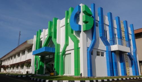 Masuki Pasar Asia, Elsewedy Electric Akuisisi PT CG Power Systems Indonesia