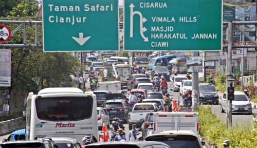 Ingin Jalan-jalan ke Puncak Bogor? Perhatian, Harap Bawa Ini Ya
