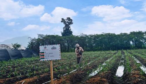 Dukung Petani Milenial, PT Agro Jabar Siapkan Lahan Dua Hektare