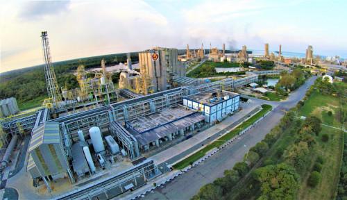 Pupuk Indonesia Masih Mengkaji Lokasi Pembangunan Pabrik di Papua Barat