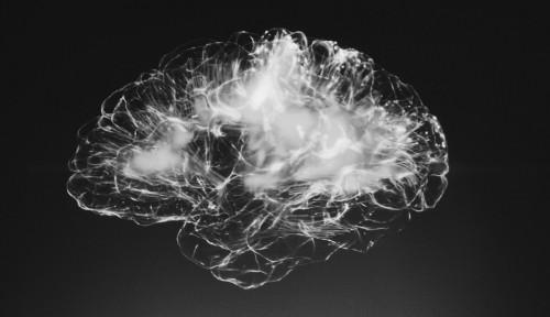 Ingin Menjaga Kesehatan Otak? Coba Konsumsi 6 Makanan Sehat Ini