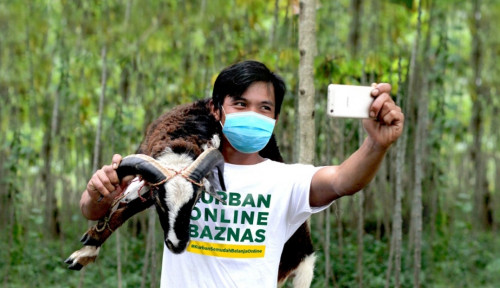 Gagas Kurban Online, Baznas Salurkan 4 Ribu Hewan Kurban ke Seluruh Indonesia