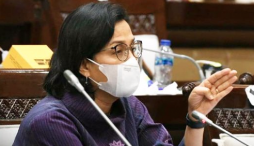 Orang Pro Jokowi Tuding Sri Mulyani Bikin Gaduh PPKM Darurat