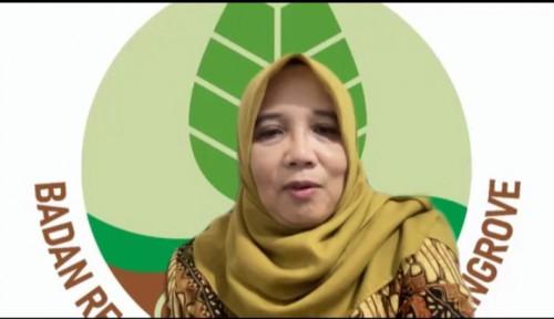 BRGM Targetkan Sumut dalam Pemanfaatan Ekosistem Mangrove Menjadi Tambak