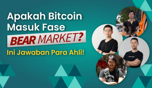 Apakah Bitcoin Masuk Fase Bear Market, Begini Kata Para Ahli
