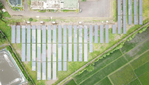 Kejar Target Turunkan Emisi Karbon, Pertamina Bidik Pemasangan PLTS