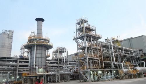 Petrokimia Gresik Beralih Gunakan Listrik PLN 11,4 MW, Berhasil Tekan Biaya Hingga 12 Persen
