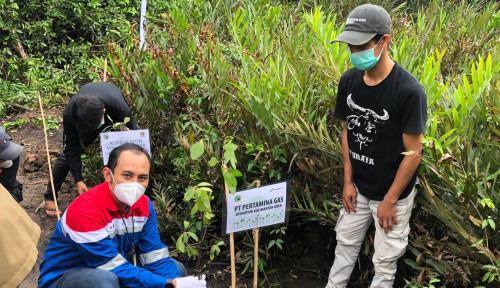 Pertamina Gas Kalimantan Area Gelar Kegiatan Pelestarian Ekosistem Mangrove