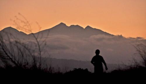 Arief Wismoyono Mencatat Pencapaian Waktu Terbaik di Ajang Lomba Lari Trail Dunia