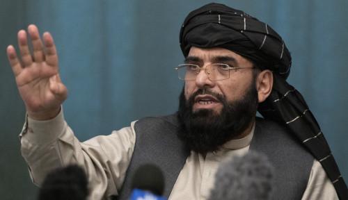Ambil Bagian di PBB, Taliban Kirim Jubirnya Jadi Utusan Resmi, Siapa Dia?
