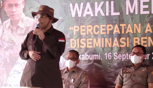 Diperintah Presiden untuk Regenerasi Petani Muda, Wamentan Beraksi: Alhamdulillah Sudah Maju Pesat