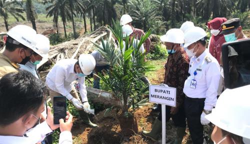 Sinar Mas Agribusiness and Food Laksanakan Replanting Sawit di Kab. Merangin, Jambi