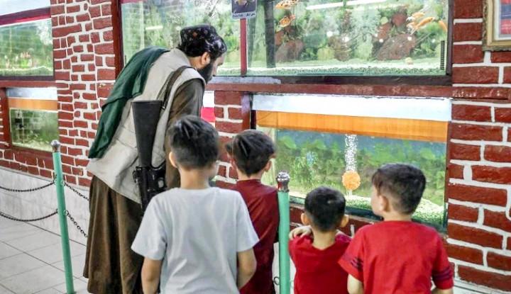 Wisata Taliban yang Bawa AK-47 di Kebun Binatang Bikin Geger Keluarga Afghanistan