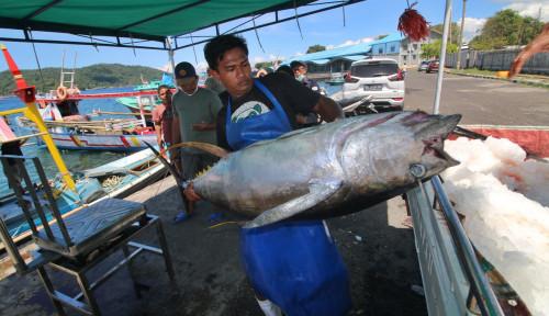 KKP Pastikan PNBP Perikanan untuk Percepat Pembangunan Sektor KP dan Kesejahteraan Nelayan